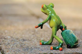 FrogLeaving